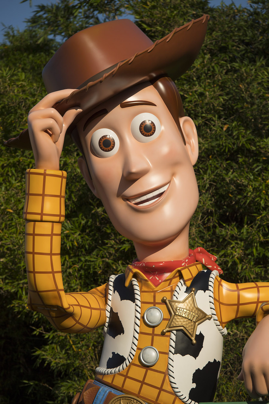 Woody Toy Story Land Disney News